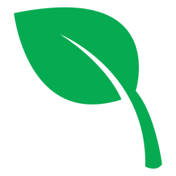 Health green leaf icon