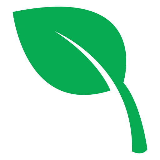 Health green leaf icon Transparent PNG