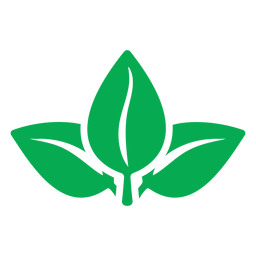Nature green leaves icon