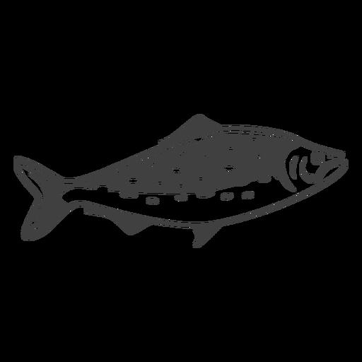 Ilustración de pescado de mariscos Transparent PNG