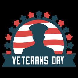Plano del día de los veteranos usa
