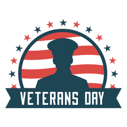 Veterans day usa flat