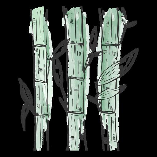 Bambúes dibujados impresionantes