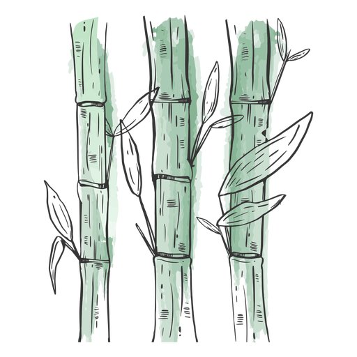 Bambus desenhados demais