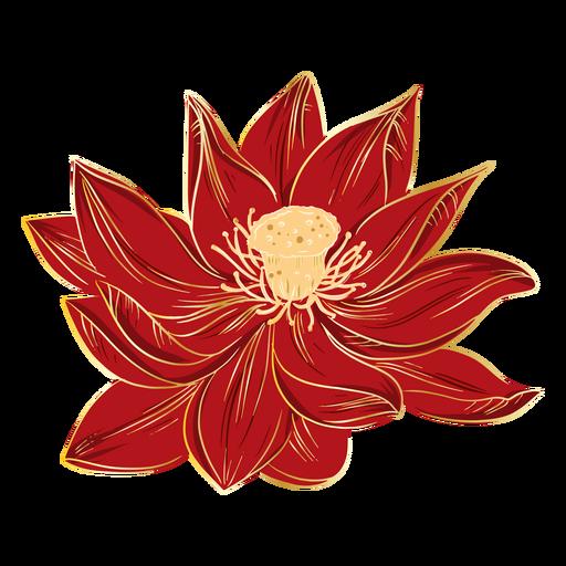Chinese hibiscus flowers