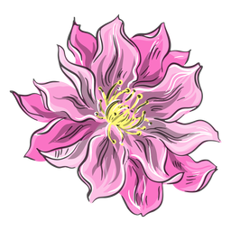 Bonita flor rosa china
