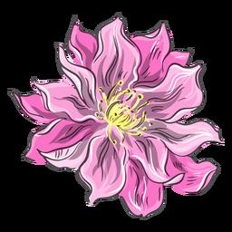 Chinesische rosa Blume schön