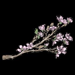 Flores rosadas chinas