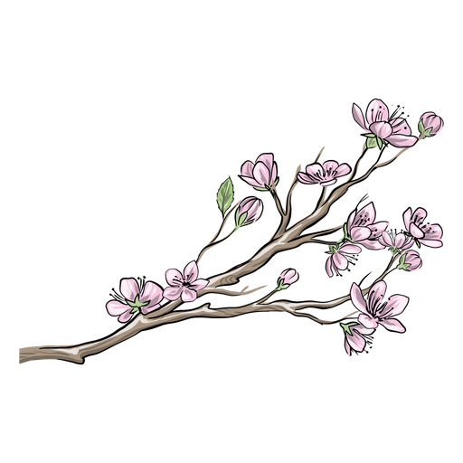 Chinese pink flowers