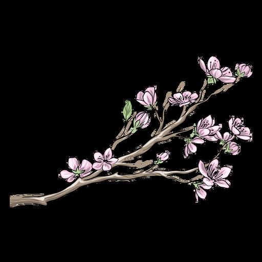 Flores cor de rosa chinesas