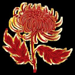 Crysanthemum Feuer wie Blume