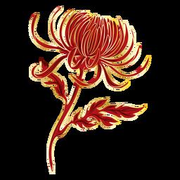 Crysanthemum pretty flower