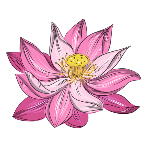 Cute chinese pink flower Transparent PNG
