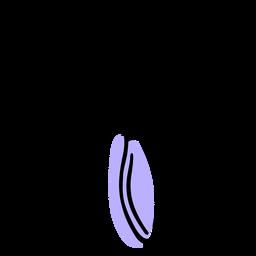 Escova de rolo de cabelo duotone