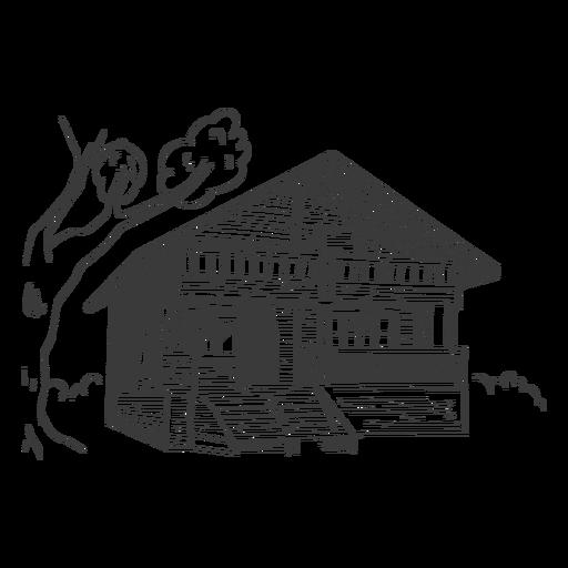 House bamboo drawn