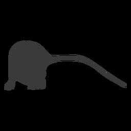 Silueta de ratón de cola larga