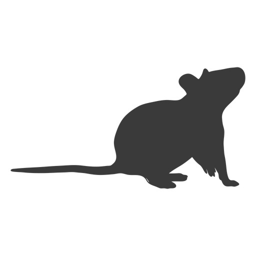 Mouse looking up silhouette