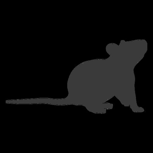 Rat?n mirando hacia arriba silueta