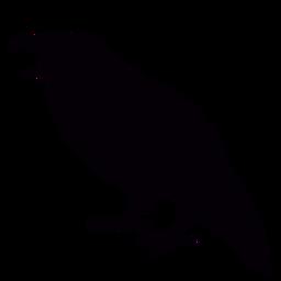 Pássaro corvo de boca aberta