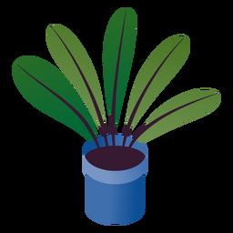 San Valentín simple planta en maceta isométrica