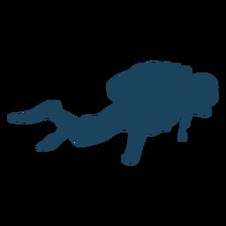 Silhueta de mergulho estável