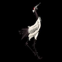 Tall crane bird