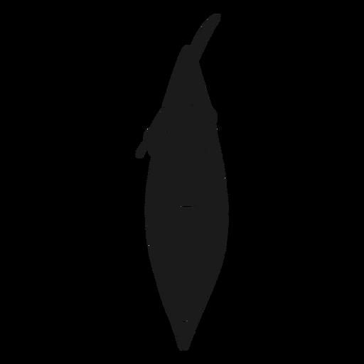 Top view kayak silhouette