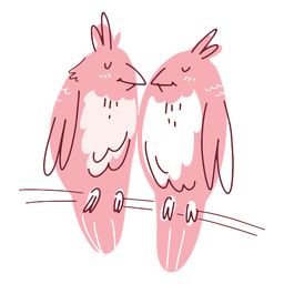 Valentine birds couple