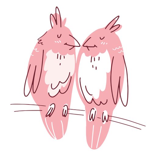 Valentine birds couple