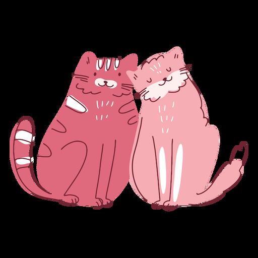 Valentine cats couple