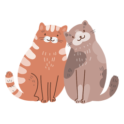 Valentine cats cute couple