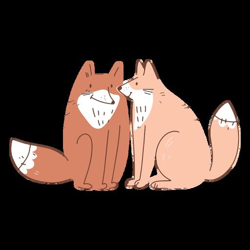 Valentine foxes couple