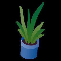 Planta en maceta de san valentín isométrica