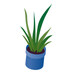 Valentines potted plant isometric