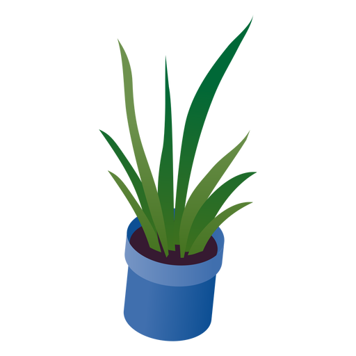 Valentines potted plant isometric Transparent PNG