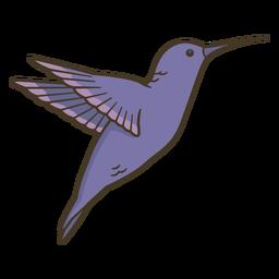 Animal hummingbird illustration