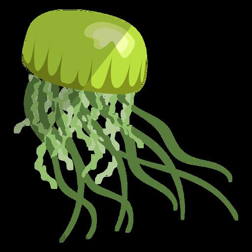 Plano medusa negra
