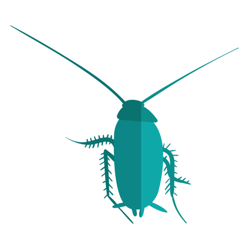 Cucaracha azul plana