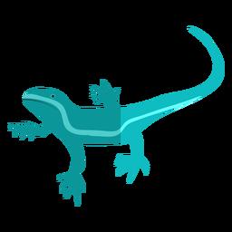 Iguana azul plana