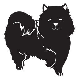 Cão feliz bonito cachorro preto