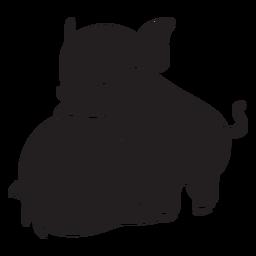 Cute pig behind black