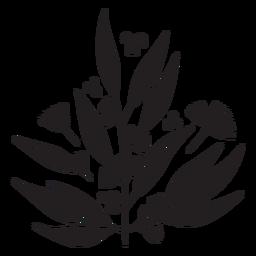 Blumen pflanzen schwarze Pflanze