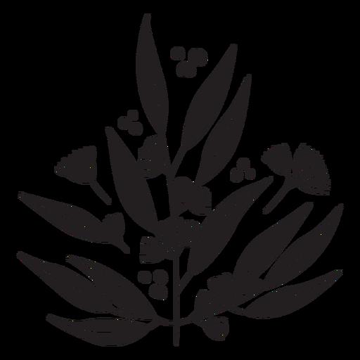 Flores planta planta negra