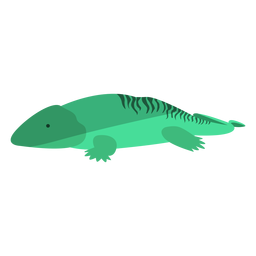 Green primitive amphibian flat