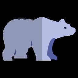 Urso polar plano