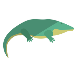Primitive amphibian flat