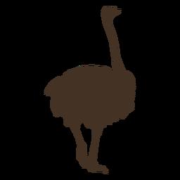 Silhueta de avestruz vista traseira