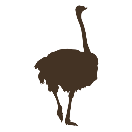 Silueta de avestruz vista posterior