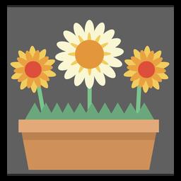 Cute flower box