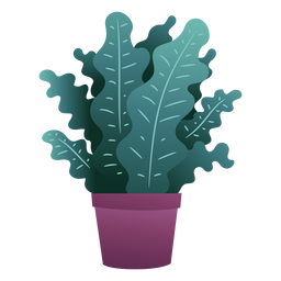 Cute plant in pot